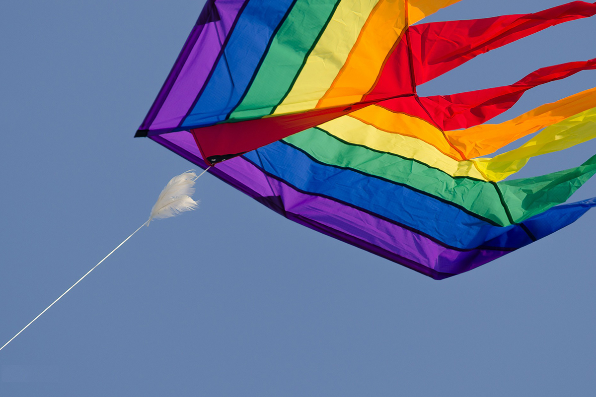 Kids might not take it right, but you must be informed that kites are not allowed on board!