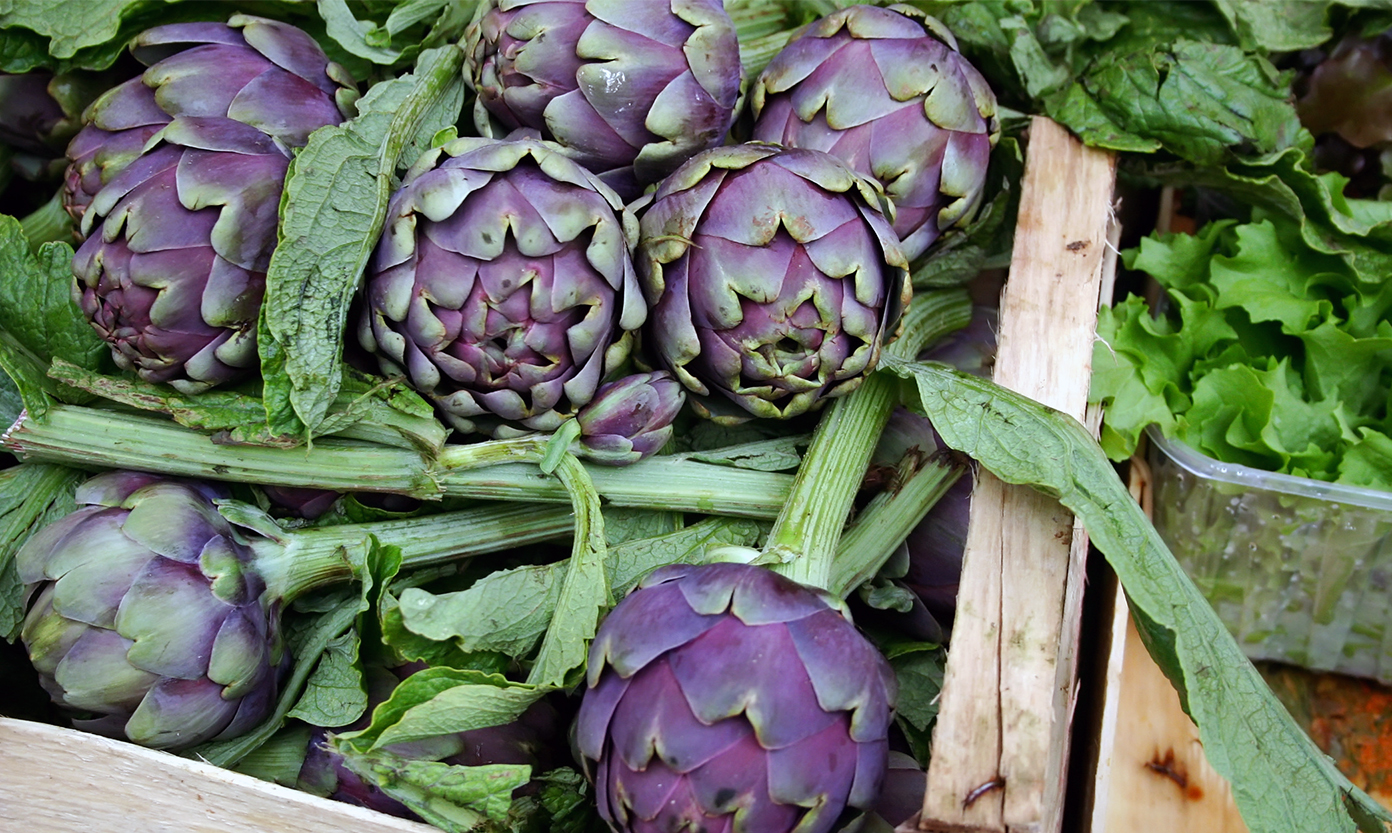 A basket full of Roman artichokes