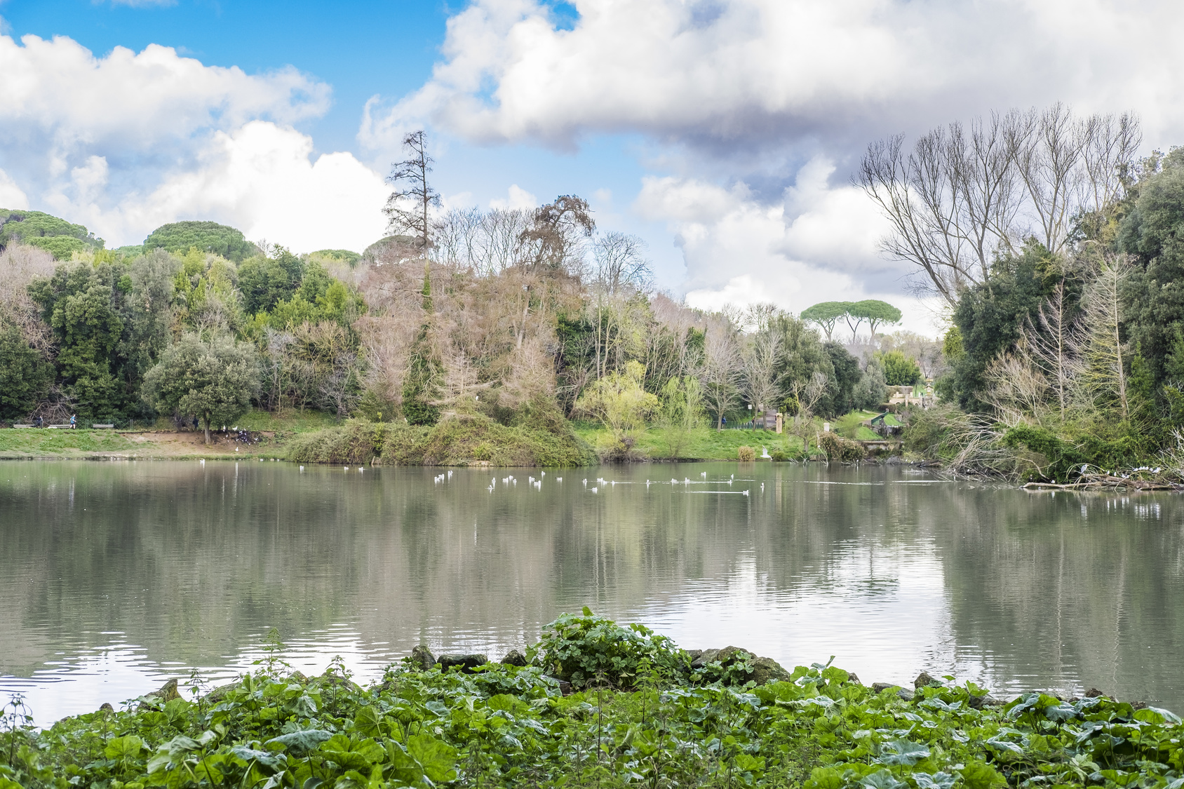 Views of the Lake of the Belvedere - Villa Pamphili (Rome)